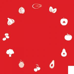 food-circle